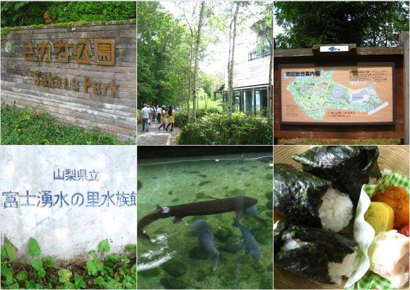 2011-07-301.jpg