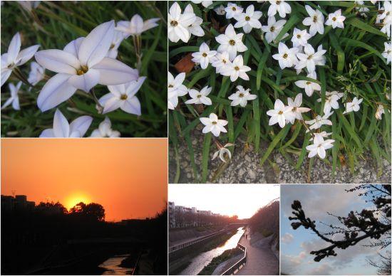 2012-04-011.jpg
