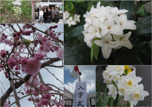 2012-04-062.jpg